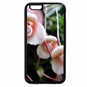 iPhone 6S / iPhone 6 Case (Black) Orchid