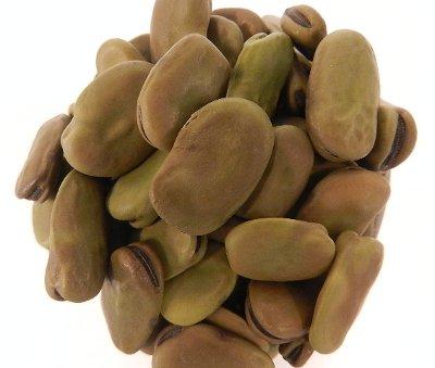 OliveNation Organic Fava Beans, Dried Broad Beans, Non-GMO, Gluten Free, Kosher, Vegan - 1 pound