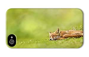 Hipster carrying iPhone 4S case sleeping fox PC 3D for Apple iPhone 4/4S