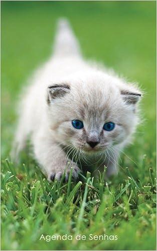 Agenda de Senhas: Agenda para endereços eletrônicos e senhas: Capa gatinho de olhos azuis - Português Brasil Agendas com gatos: Amazon.es: Agendas e ...