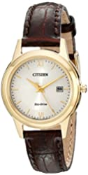 Citizen Eco-Drive Women's Stainless Steel Watch with Brown Band (Model: FE1082-05A)