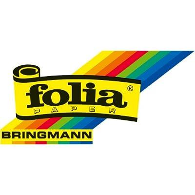 folia 2407–Matchboxes–Blank Large, 12Pack, White: Toys & Games