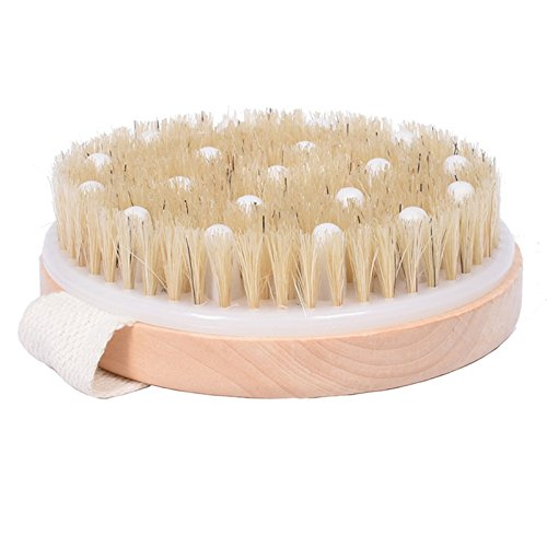 (Dry / Wet Body Brush with Massage Nodules by ROMER - Natural Bristle for Better Exfoliation - Clear Dead Skin Cells While Reducing Cellulite & Toxins )