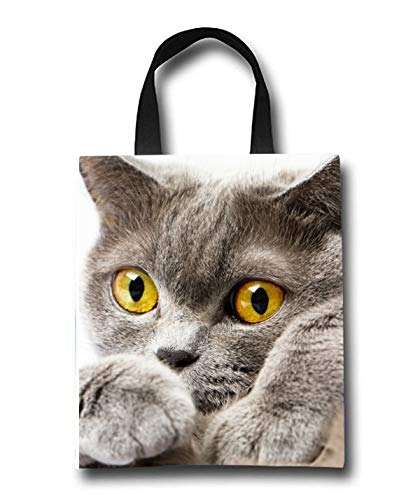 Cute Gray Cat Beach Tote Bag - Toy Tote Bag - Large Lightweight Market, Grocery & Picnic by Linhong