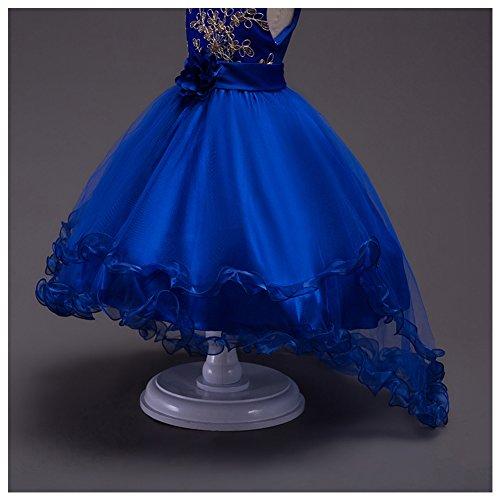 LSERVER-Flor vestido de los niñas para las fiestas en primavera u otoño, Azul Marino, 170: Amazon.es: Ropa y accesorios