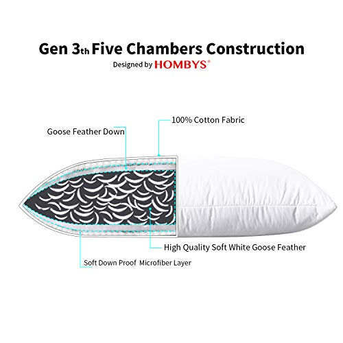 HOMBYS Goose Feather Down Soft Bed Pillows Insert for Sleeping,King Size, 45oz Fill Weight Medium Support,Hotel Collection,100% Cotton Down Proof Cover(White,2 Pack)