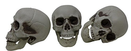 Plastic Creepy Skeleton Skull Head (Pack of Three) Halloween Haunted Party Decoration Accessories