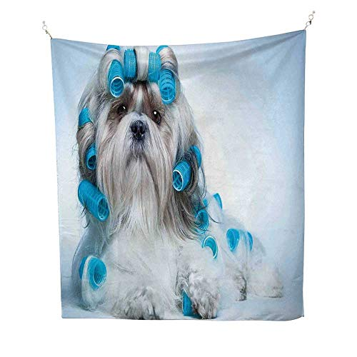 - Dog Lover Decoroutdoor tapestryShih tzu Dog with Surlers Grooming Hairstyle Salon Front View Closeup Studio Shot 70W x 84L inch Ceiling Tapestry