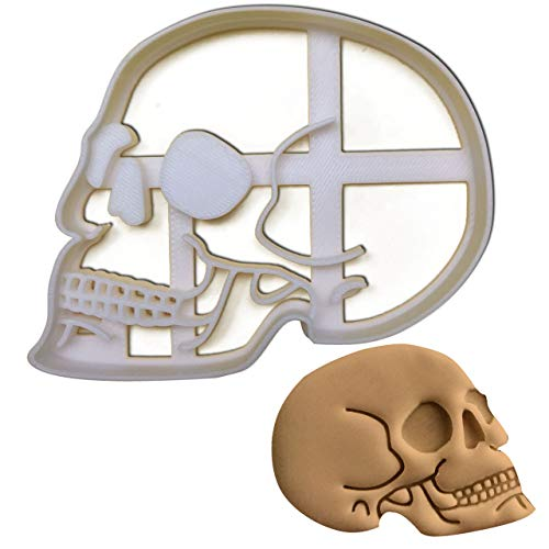 Anatomical Skull Cookie cutter, 1 pc, Ideal for Medical themed -