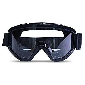 Daixers Anti-Fog Clear Lens Safety Goggle (Black)