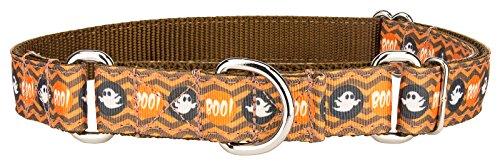 Country Brook Design Boo'tiful Phantoms Ribbon Martingale Collar - Large