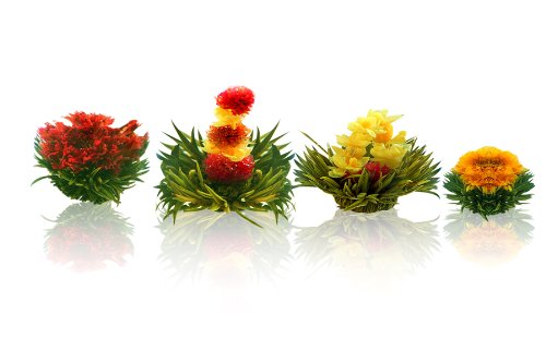 Tea Beyond FLS-3SET-BLF2100 12-Pack Fab Flowering Blooms Tea