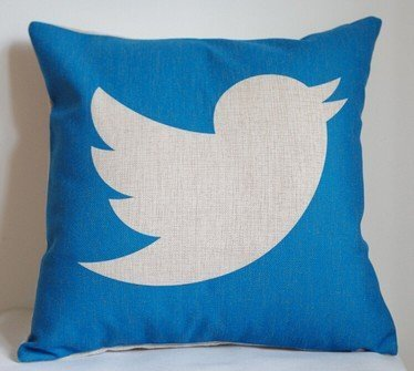 lfarncomboutlet-twitter-pillow-cover-creative-social-media-logo-twitter-throw-pillow-case-pillowcase