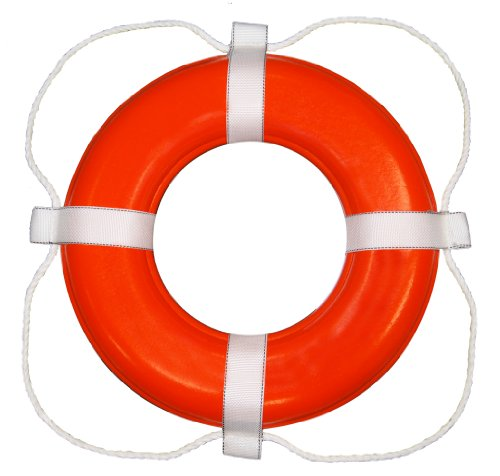 Taylor Made Products 368 USCG Approved Foam Life Ring (24'', Orange) by Taylor Made Products (Image #1)