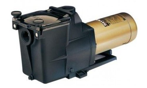 Hayward 2-1/2-Hp 2 Speed Motor by Hayward
