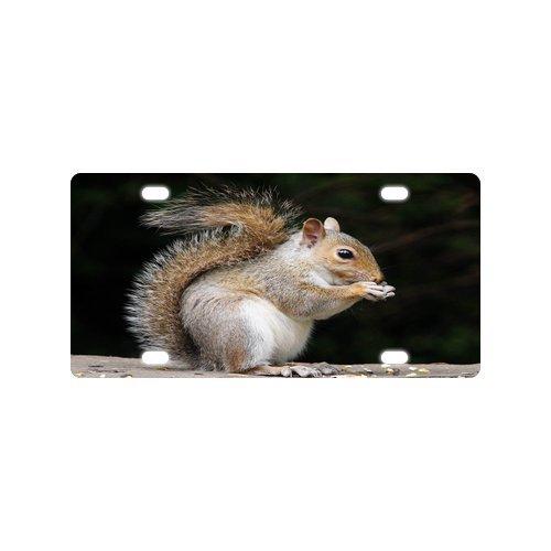 Hot Sale Discount Car Tag Funny Cute Squirrel Pattern Durable Aluminum Car License Plate 12