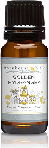 Welcome Hydrangea (Barnhouse - Golden Hyndrangea - Premium Grade Fragrance Oil (10ml))