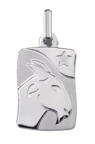 www.diamants-perles.com - Médaille Zodiaque - Or Blanc 375/1000 - CAPRICORNE