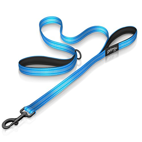 Aqua Leash - Reflective 4 Feet Nylon Dog Leash with Padded Double Handles, 2 Heavy Duty Neoprene Handles for Control Safety Training Durable Traffic Handle, For Medium to Large Dog (LARGE - 1