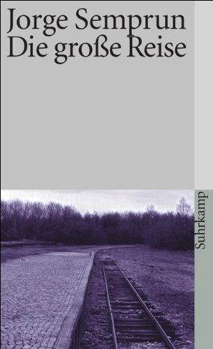 Die große Reise: Roman (suhrkamp taschenbuch)
