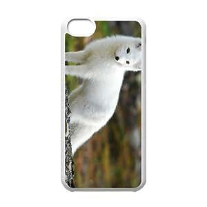 iPhone 5C Phone Case Fox MB15540