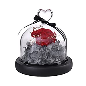 VORCOOL Artificial Rose Flower in Clear Glass Dome for Home Wedding Decor Valentine Birthday (Red) 53