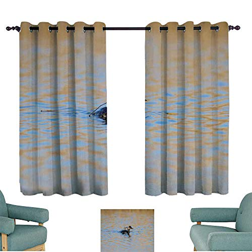 (Windshield Curtain Billets for Poultry Privacy Protection 55