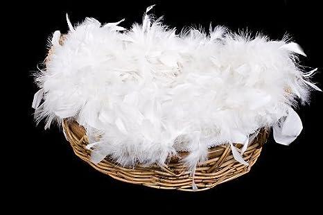 Amazon.com: 2.2 pound de 100% blanco de lujo lavar plumas de ...
