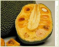 Fresh Whole Jackfruit (One Fruit 15-18lbs) by Tropical Importers (Image #2)