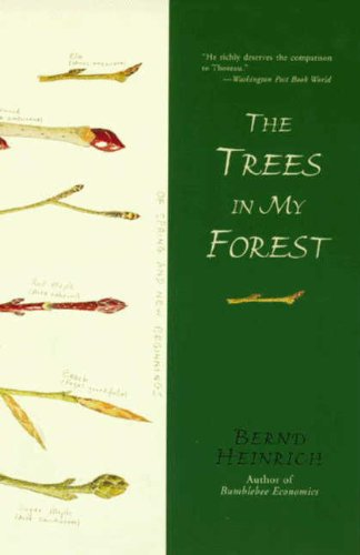 The Trees In My Forest Epub