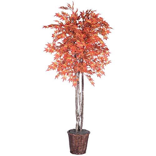 - Vickerman TDX3770-07 Maple Deluxe Tree, 7', Burnish Orange