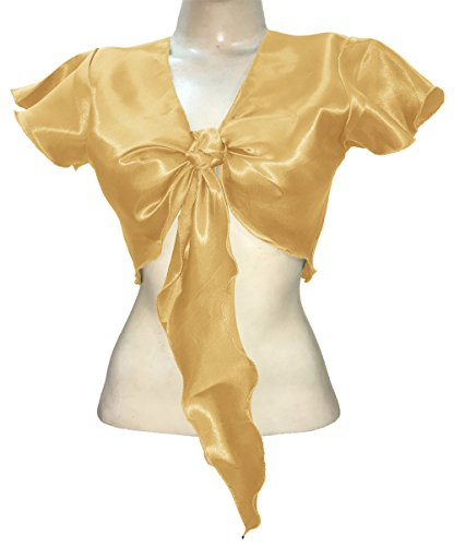 Indian Trendy Women's Satin Short Sleeve Tie Top Choli Blouse Belly Dance Gypsy (One Size, Light Gold)