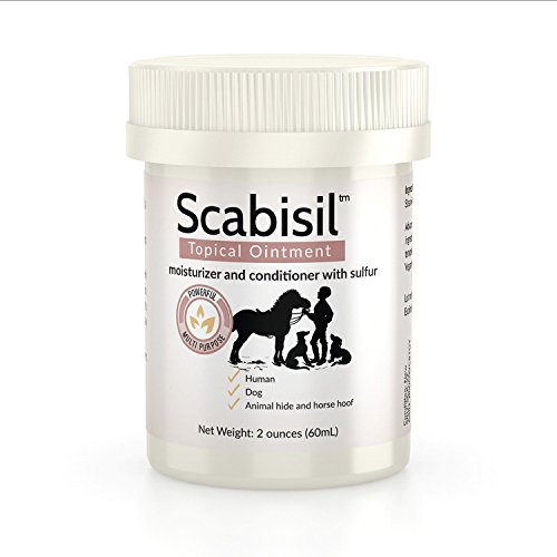 [Scabisil Topical 10% Sulfur Ointment - Relief From Mite, Insect Bite, Acne, Fungus, Multipurpose, All Natural.] (Mite Cream)