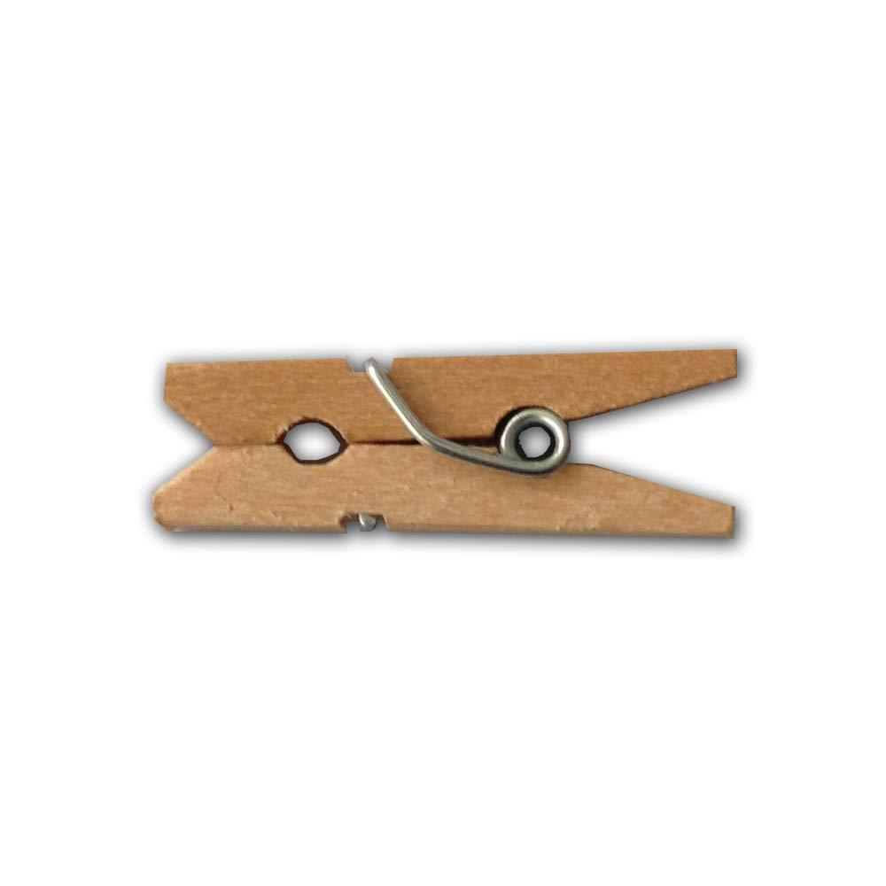 LWR Crafts mini mollette in legno in 15 colori 100 pezzi per confezione misura 2,5 cm All