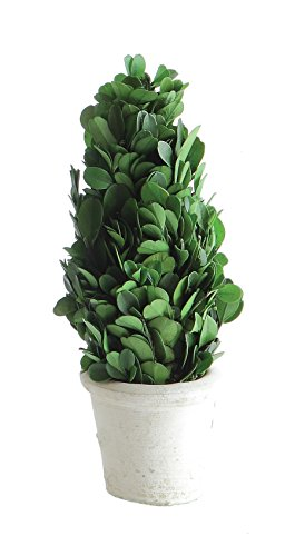 Creative Co op Boxwood Shaped Topiary