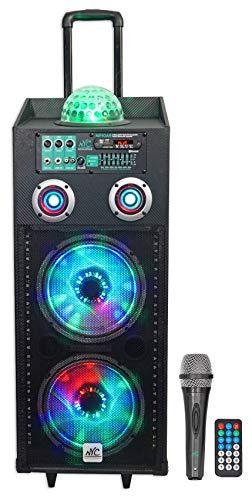 - NYC Acoustics N210AR Dual 10