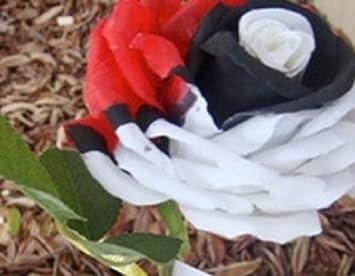 graines de fleurs rose rosier dragon 3 couleurs fleurs RARES 20 graines  RARE fleurs envoi sous