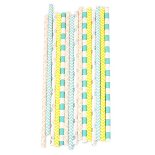 Sherbert Biodegradable Straws (15pc+)