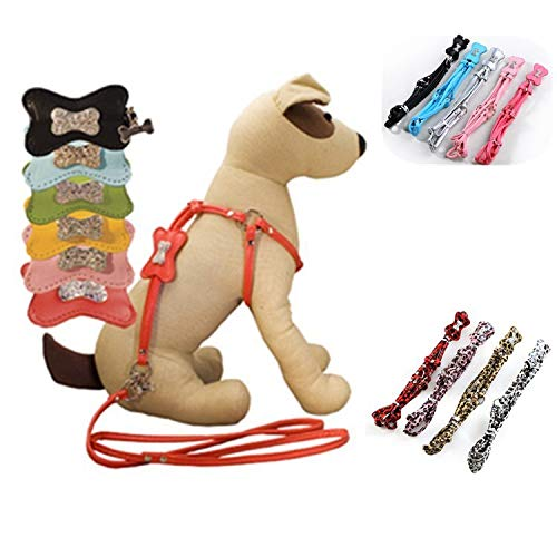 Pety Pet Designer Leather One-Piece Step-in Dog Harness and Leash with Decorative Rivet