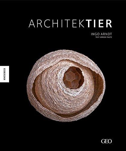 Architektier: Baumeister der Natur