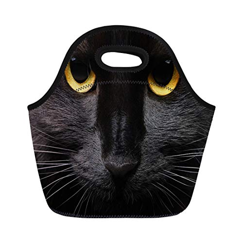 Semtomn Lunch Tote Bag Yellow Animal Closeup Portrait of Halloween Black Cat Face Reusable Neoprene Insulated Thermal Outdoor Picnic Lunchbox for Men -