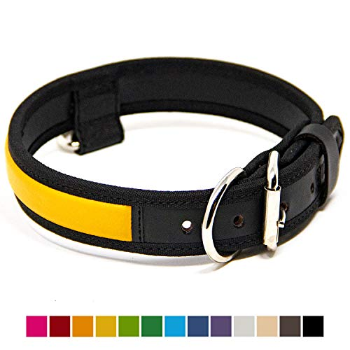 Logical Leather Premium Leather Dog Collar - Best Full Grain Heavy Duty Genuine Leather Collar (Yellow, - Strap Yellow Collar