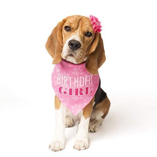 - Pooch Perfect Dog Birthday Bandana Princess Pink Girl Design in 3 Sizes - Small, Medium and Large | Perfect for Your Pet's Special Day! (Medium)
