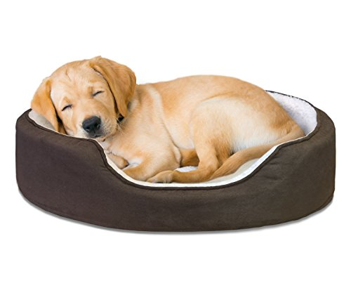 Furhaven Pet NAP Pet Bed Orthopedic Oval Egg-Crate Lounger Dog Bed or Cat Bed, Medium, Espresso