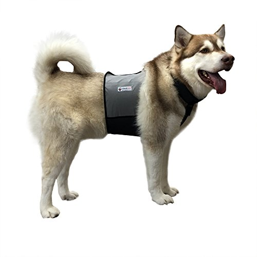 CoolerDog Dog Cooling Vest and Cooling Collar - Ice Vest for Dogs Large (27