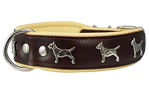 Leather Padded Collar Terrier 19 25 product image