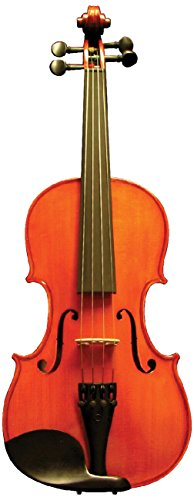 Corde di Salice CS115VN1/8 Beginner Violin Package - Primo, 1/8 by Corde di Salice