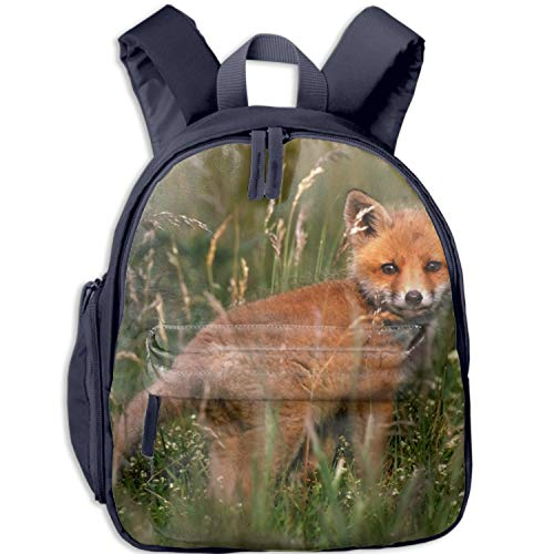Oxford Cloth Laptop Bag School Backpack Fox Baby Bookbag Shoulder Daypack Casual Travel Bags for Teen Girls ()
