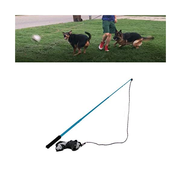 Jalousie-Dog-Flirt-Pole-with-Three-Squeaky-Toys-Plush-Toys-Dog-Teaser-Wand-with-Refills-Upgraded-Rope