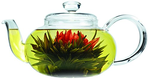 Primula Glass Top (Primula Lea Teapot with Infuser and 2 Flowering Teas, 22-Ounce)